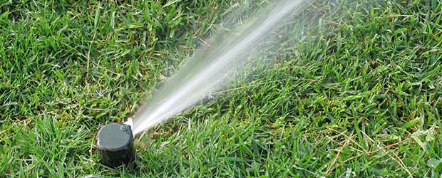 Rainbird Sprinkler System. How To Cut Umbilical Cord French Door Reviews. Psychology Programs In California. Garage Door Repair Cincinnati. Point Of Sale Restaurant Systems. Transmission Repair In Dallas Tx. University Of New Orleans Nursing. Cabinet Refacing Price Range. Bankers Conseco Life Insurance Company Review